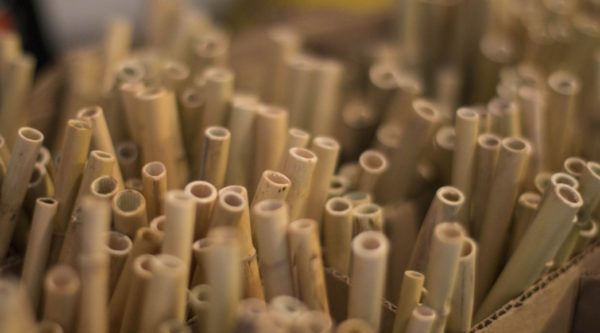 reed straws
